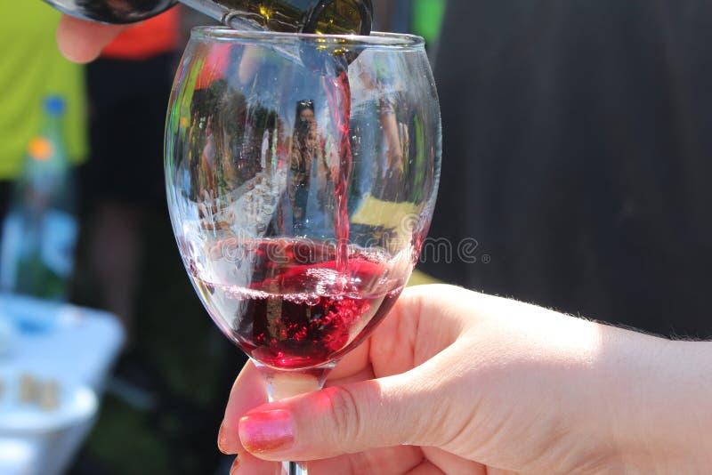 Дегустация вин в Bihor стоковые фото