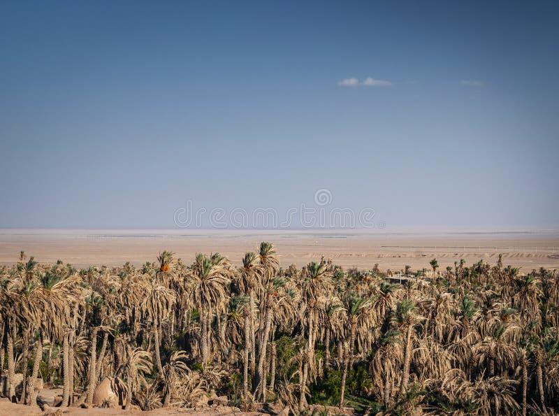 Дезертируйте взгляд ландшафта в оазисе южном Иране garmeh стоковые фото