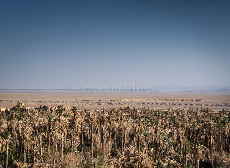 Дезертируйте взгляд ландшафта в оазисе южном Иране garmeh стоковая фотография rf