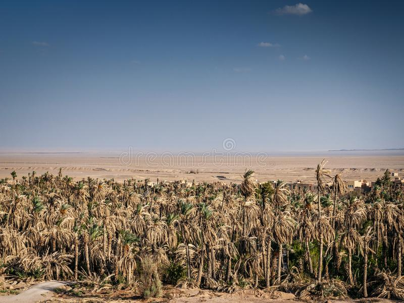 Дезертируйте взгляд ландшафта в оазисе южном Иране garmeh стоковое фото