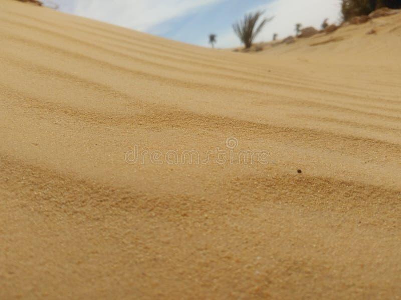 Дезертируйте песок стоковое фото