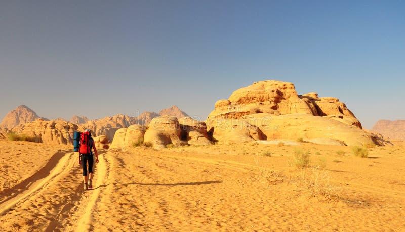 дезертируйте hiker стоковые фотографии rf