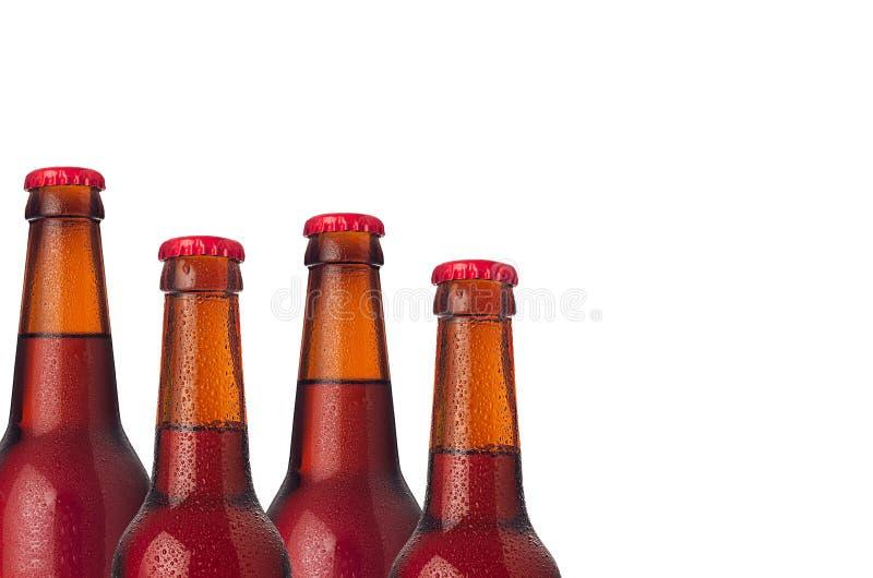 Декоративная граница загерметизированных холодных красных пивных бутылок эля с водой падает на белую предпосылку стоковые изображения rf