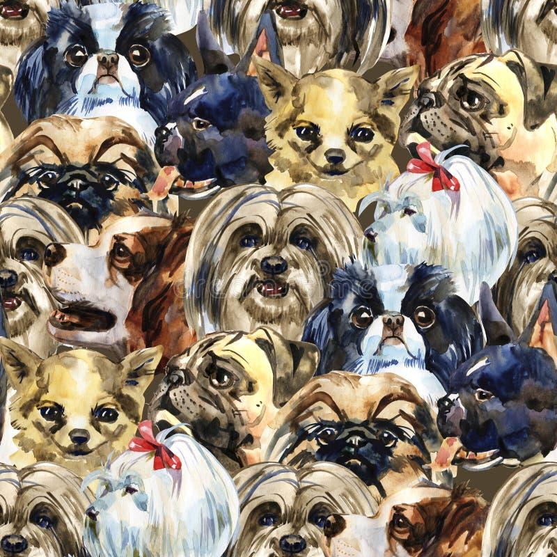 Декоративная собака разводит картину дикого животного в стиле акварели Полное имя животного: собаки Дикое животное Aquarelle иллюстрация вектора
