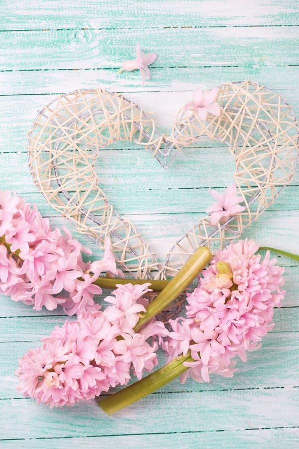Декоративное сердце и розовые гиацинты на бирюзе покрасили woode стоковое фото rf