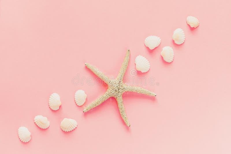Декоративное starfishe и естественные раковины моря на розовой предпосылке r o стоковые изображения rf