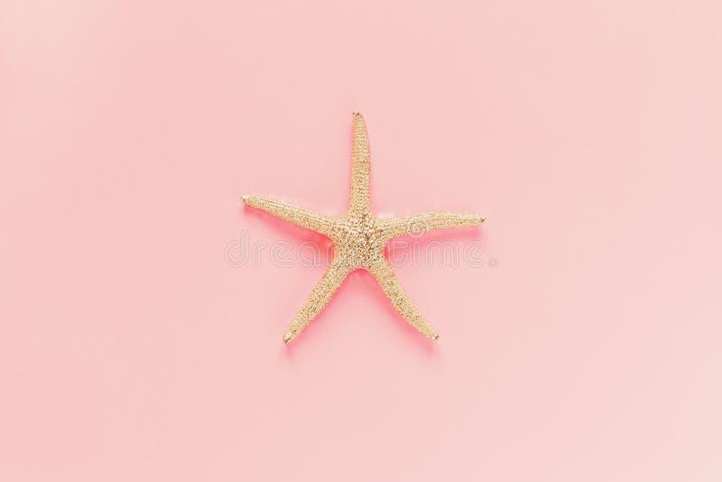 Декоративное starfishe и на розовой предпосылке r o стоковые изображения