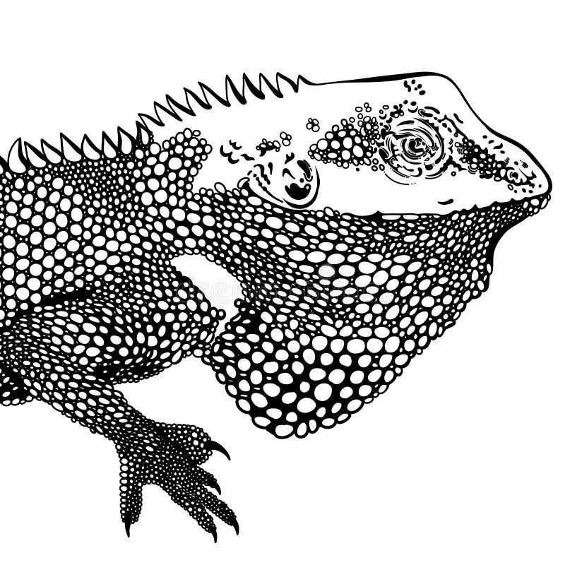 Декоративное zentangle художественного произведения хамелеона воодушевило, заплаты и стикеры Тропические листья ящерицы и monster иллюстрация вектора