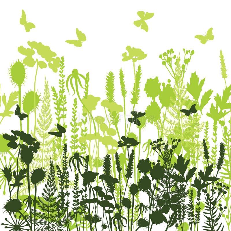 Декоративные силуэты луга различных заводов одичалых, цветков иллюстрация штока