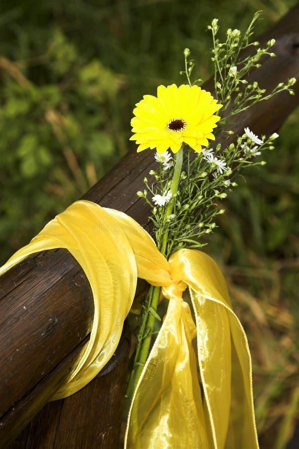 Декоративные цветки стоковые фото