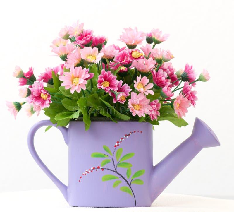 декоративные цветки стоковая фотография rf