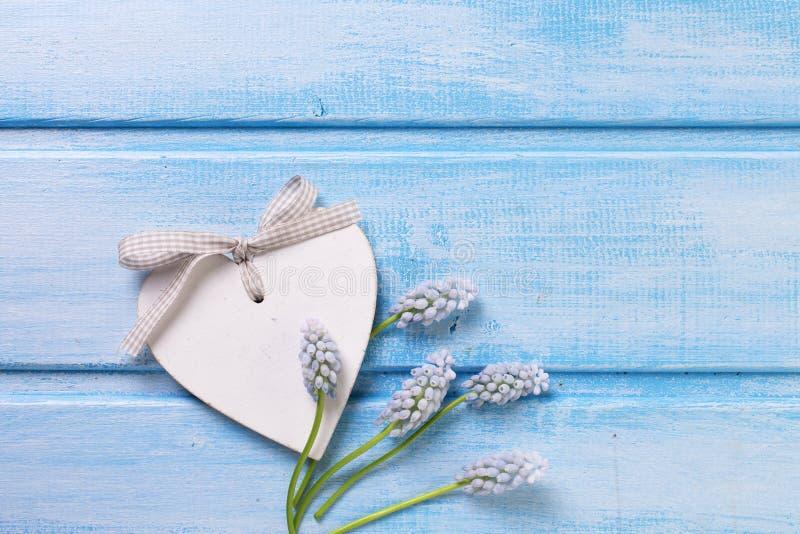 Декоративные muscaries цветков сердца и предложения стоковые изображения rf