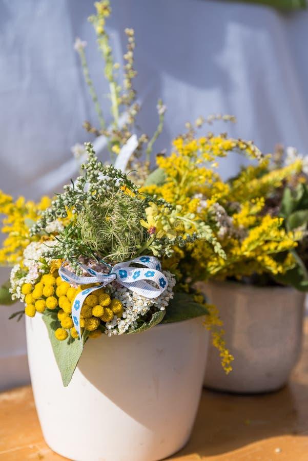 Декоративный букет травы в цветочном горшке стоковые изображения