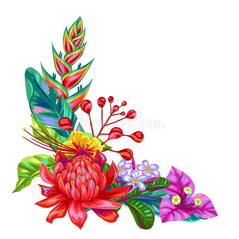 Декоративный объект с цветками Таиланда Тропические multicolor заводы, листья и бутоны иллюстрация вектора