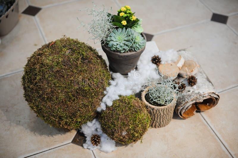 Декоративный сезонный состав с цветками стоковое фото
