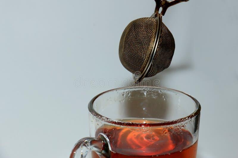 Делать чай с infuser стоковые фото
