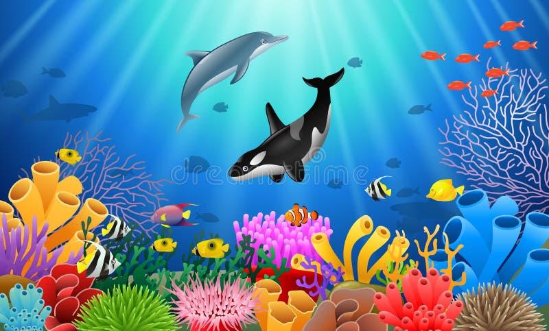 Дельфин-касатки и шарж дельфина бесплатная иллюстрация