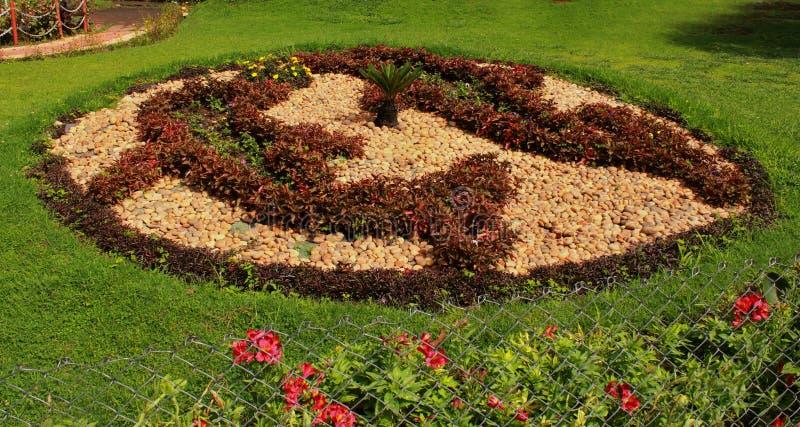Дельфин удит конструированный формой цветник парка в парке bryant стоковое изображение
