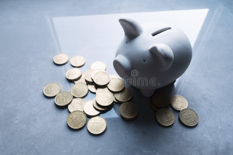 Денежный ящик свиньи стоковая фотография rf