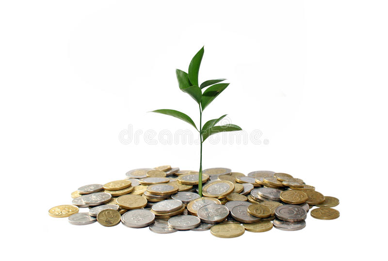 деньги принципиальной схемы растущие стоковое изображение rf