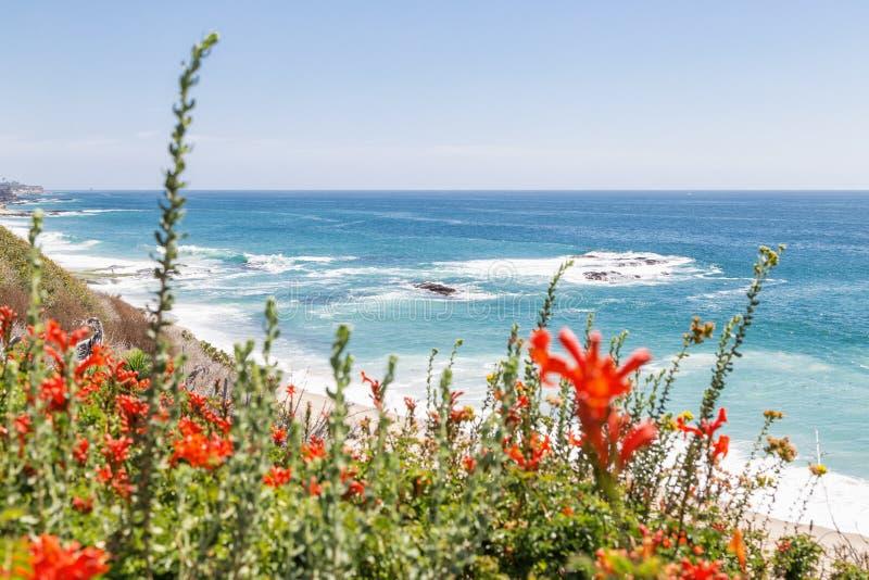 День в пляже Laguna, Калифорния стоковое изображение rf