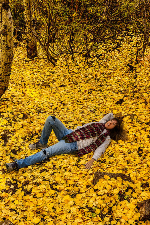 День мечтая в листьях падения стоковые изображения rf
