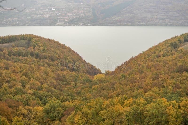 День осени в древесинах стоковое изображение rf