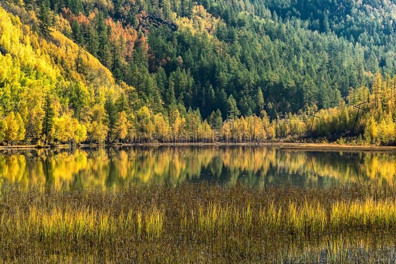 День осени на озере в горах Sayan стоковое фото rf