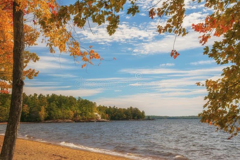 День осени солнечный на озере стоковое изображение rf