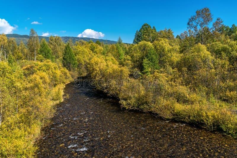 День осени Tibelti реки стоковые изображения