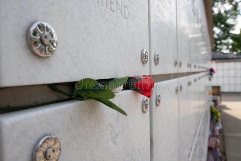 День памяти погибших в войнах 2019 на кладбище Нельсон лагеря в Кентукки стоковое фото
