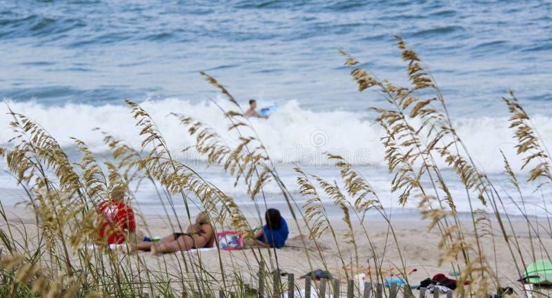 день пляжа стоковые фото