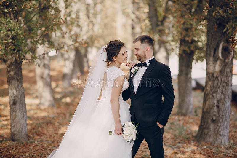 День свадьбы HD стоковые изображения rf