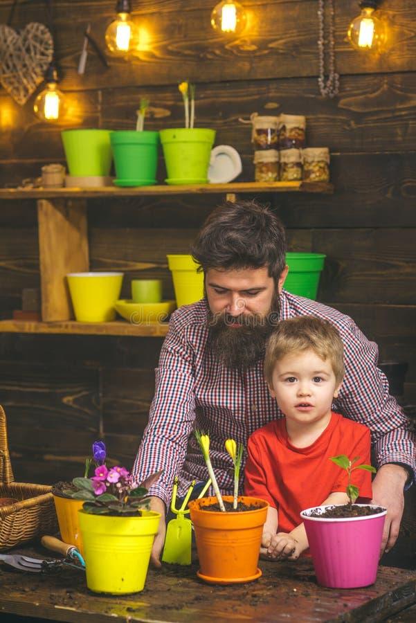 День семьи парник Бородатая природа любов ребенка человека и мальчика Мочить заботы цветка Удобрения почвы Счастливый стоковые фотографии rf