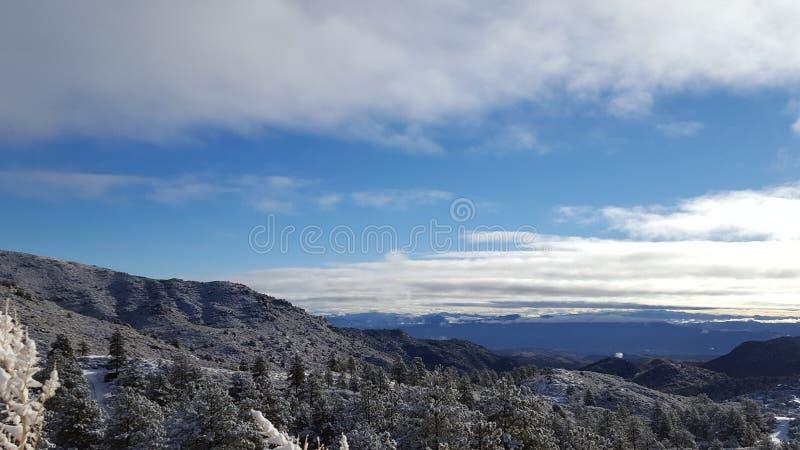 День снега потехи в стране чудес зимы стоковое изображение rf