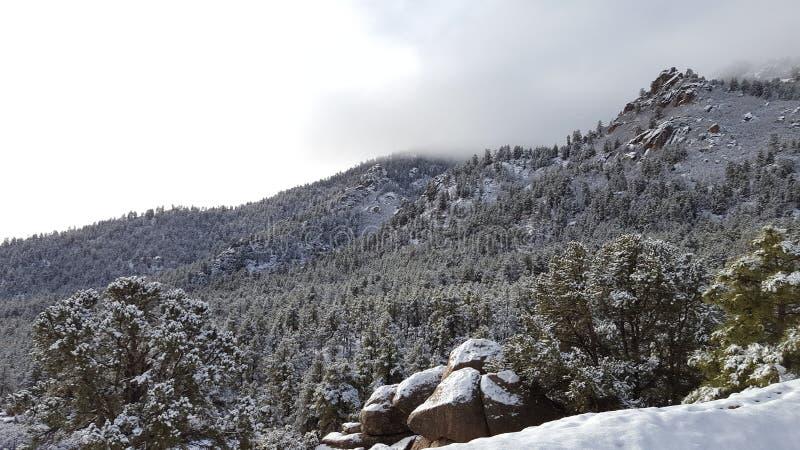 День снега потехи в стране чудес зимы стоковые изображения rf