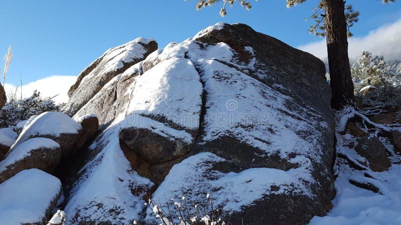 День снега потехи в стране чудес зимы стоковое фото