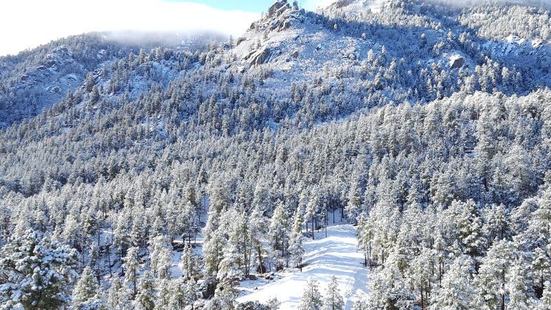 День снега потехи в стране чудес зимы стоковая фотография