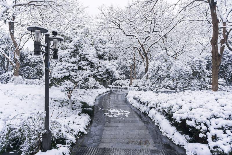 День снега Westlake стоковое изображение