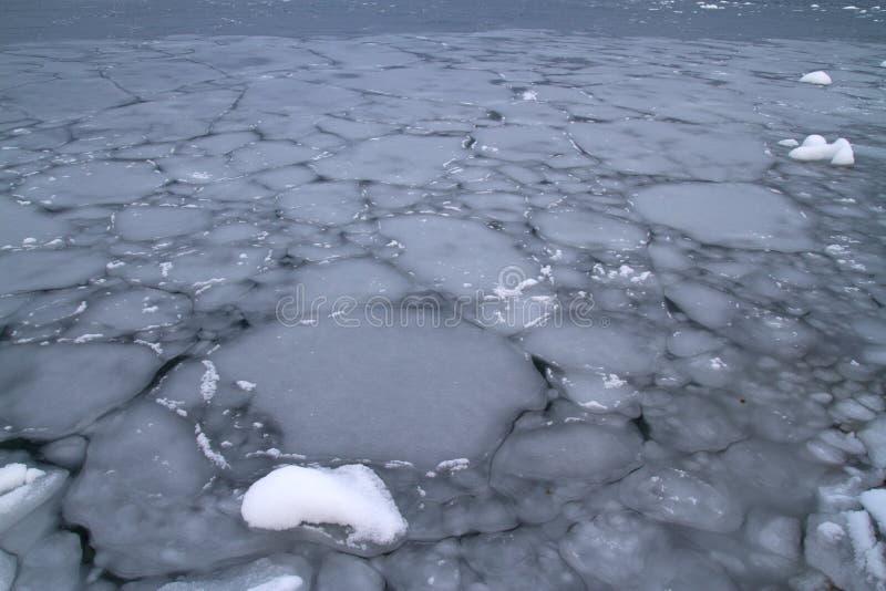 День overcast осени южного океана покрытый с льдом стоковые изображения rf
