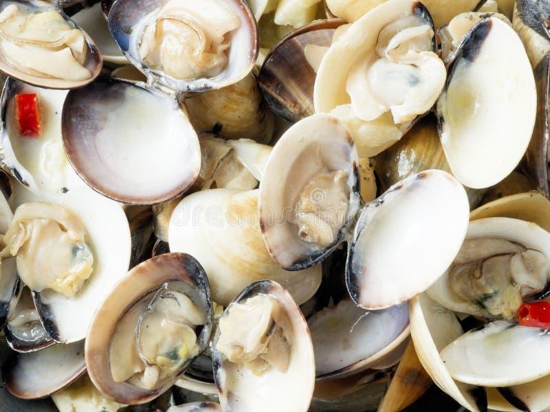 Деревенские итальянские clams vongole в предпосылке еды соуса белого вина стоковая фотография