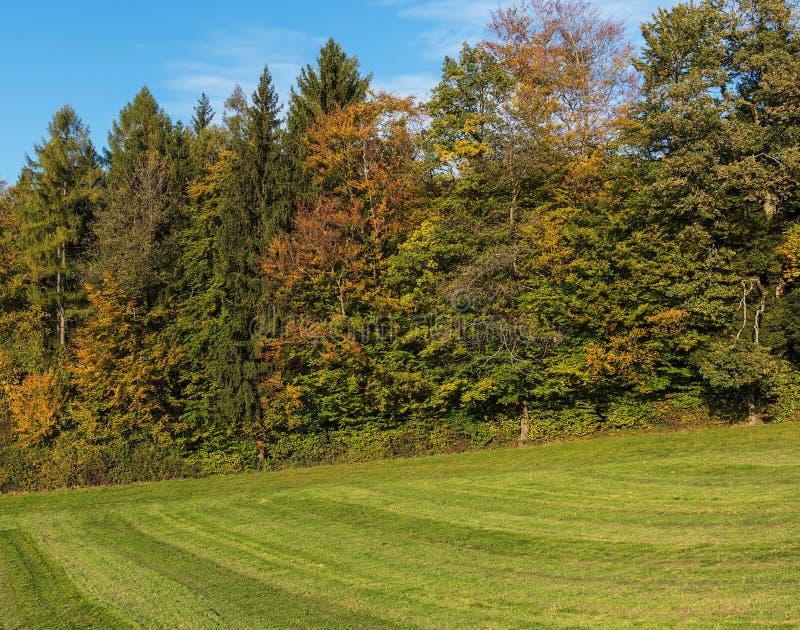 Деревенский вид в осени стоковая фотография rf