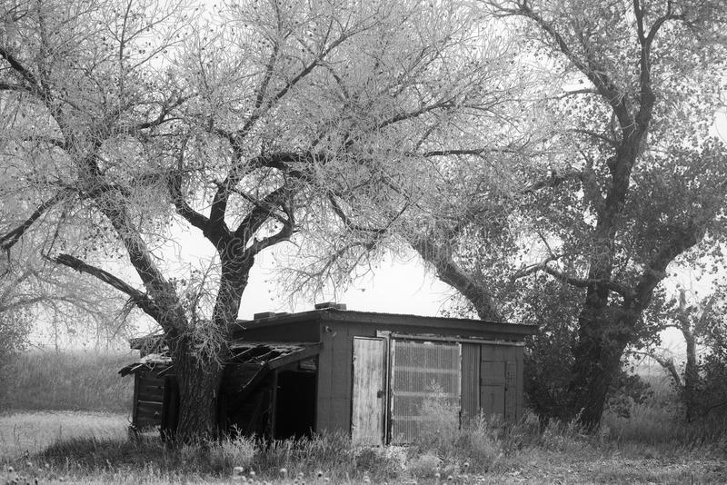 Деревенский гараж на ранчо в Колорадо стоковое изображение