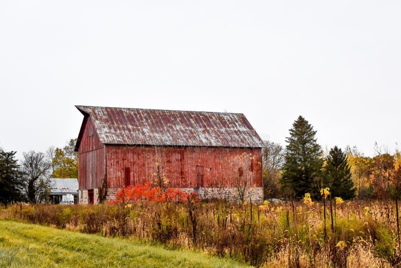 Деревенский старый амбар с полем цветов падения стоковые фото