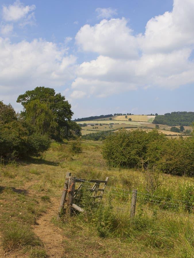 Деревенский строб фермы в ландшафте лета заплатки стоковые изображения rf