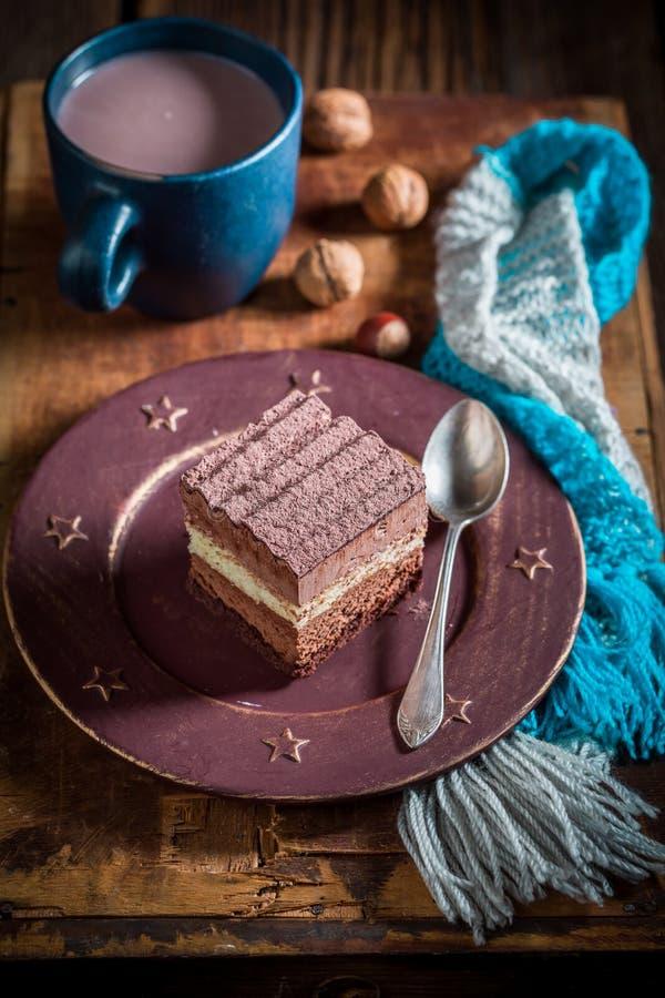 Деревенский шоколадный торт в зиме стоковые изображения rf