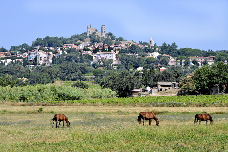 Деревня ландшафта Grimaud в Франции стоковое изображение