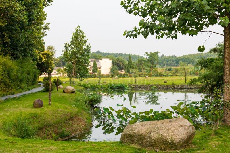 Деревня озера стоковые изображения rf