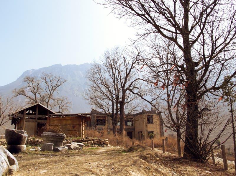 Деревня редиски стоковые изображения rf