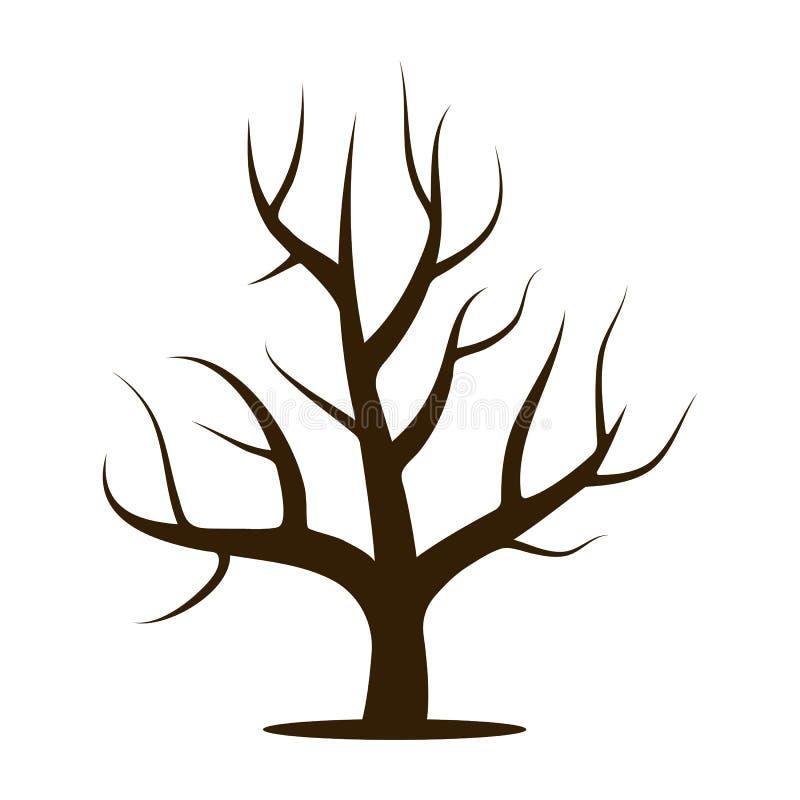 без картинка листвы дерева